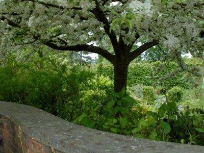 Få en have uden sneglegnav